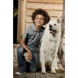 Koszulka dziecięca polo, kolor ciemno szary YPS17077-XS